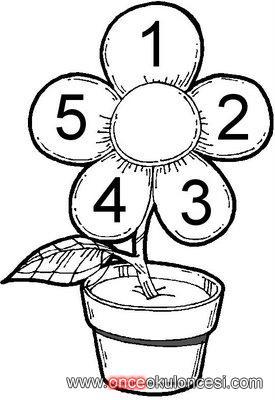 5 Yapraklı çiçek