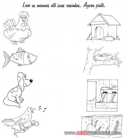 Hayvanlari Yasadigi Yerlerle Eslestirme