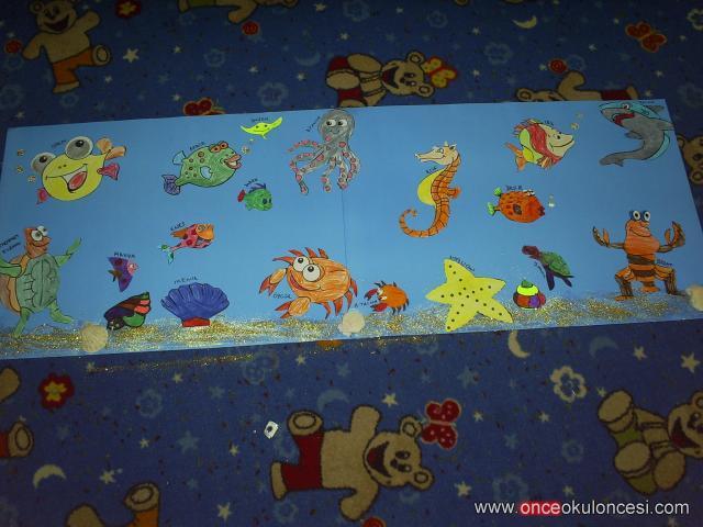 Deniz Alti Hayvanlari