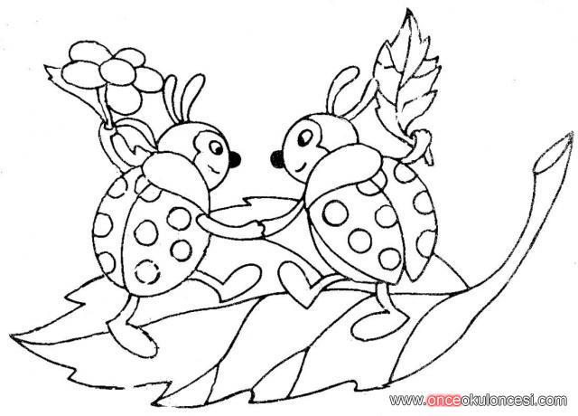 Kelebeksalyangozördek Balıkuğurböceği