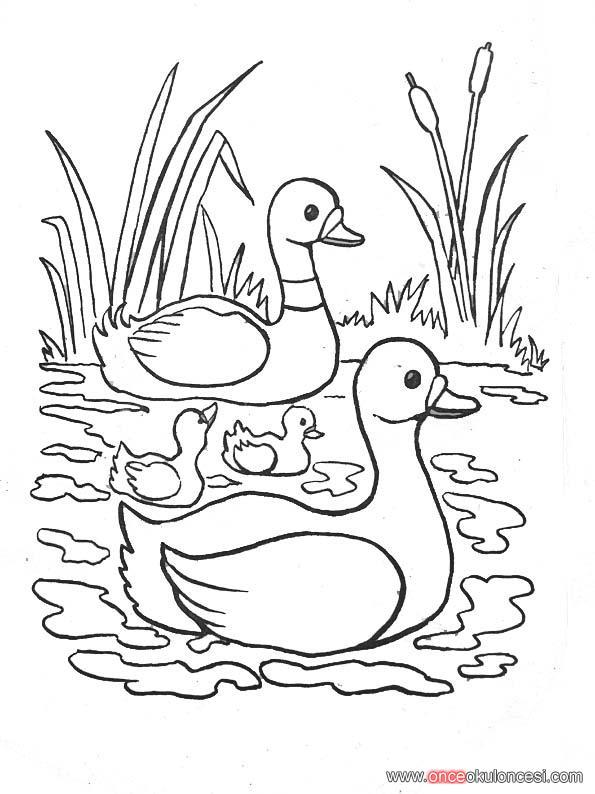 Rdek resmi - Canard a colorier ...