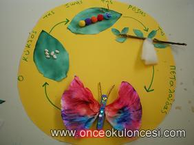 Kelebeğin Oluşum Evreleri Sanat Etkinliği
