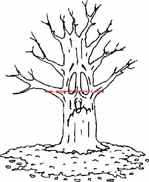 çeşitli Ağaç Boyamaları