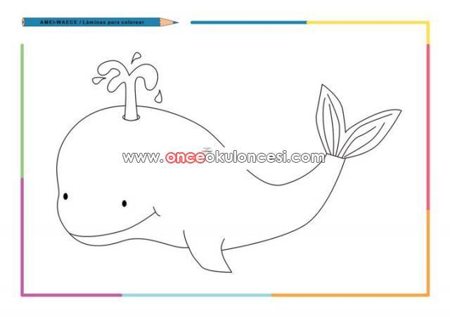 Yunus deniz yıldızı deniz kaplumbağası yengec deniz atı koepek