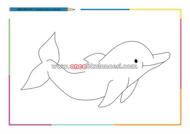 Deniz yıldızı deniz kaplumbağası yengeç deniz atı köpek