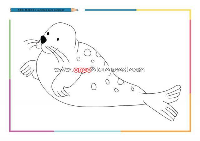 çok Güzel Deniz Canlıları Boyamaları