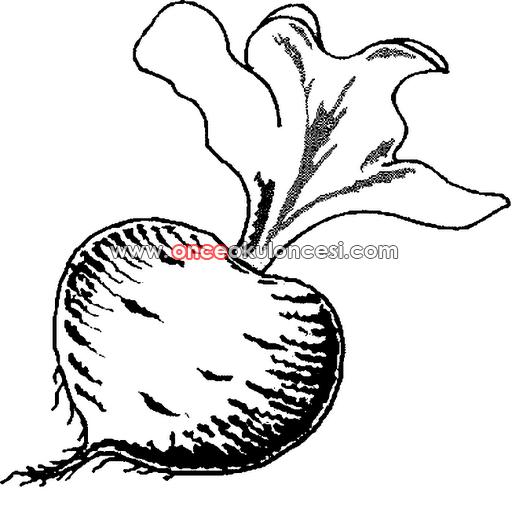 şirinorganik Sebzeler