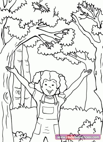 Ormanlar Onemli Boyama Sayfalari