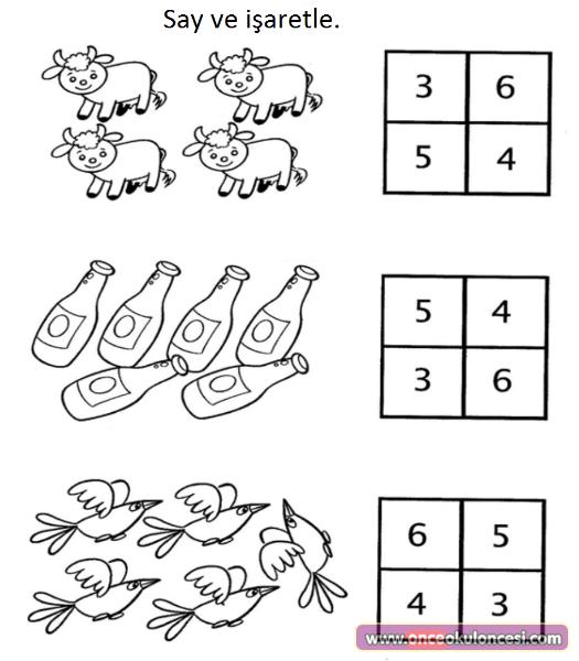 Sayi Kavrami Ve Matematik Etkinlikleri