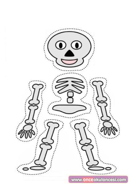 Iskelet Kalıpları